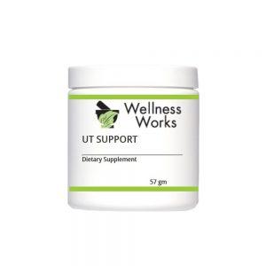 Wellness Works Ut Support